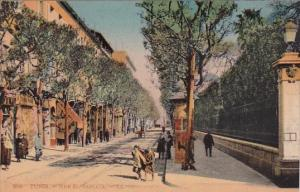 Tunisia Tunis Rue El-Sadirie 1921