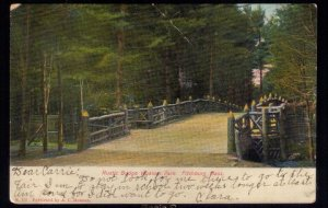 1906 US Sc #300 Colorful Litho Postcard Rustic Bridge, Whalom Park, Mass.