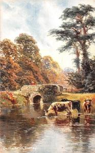 England Surrey, On the Arun, Cattle