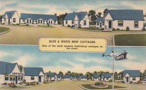 Florida Saint Augustine Blue & White New Cottages