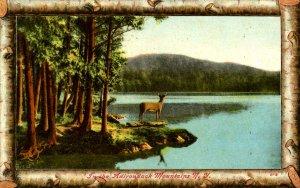 NY - Adirondacks, Lake Scene