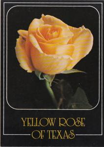 Texas The Yellow Rose of Texas