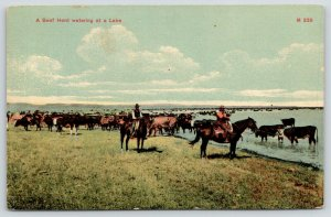 Keeling Wyoming~Beef Herd Watering @ Lake~Cowboys on Horseback Beside~1910