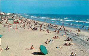 Oceanside California Beach 1960's swim summer swimsuit Postcard
