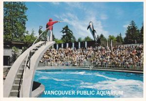 Vancouver Public Aquarium, Killer Whale, Stanley Park, Vancouver, British Col...