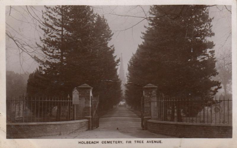 RP: HOLBEACH , England , 1909 ; Holbeach Cemetery , Fir Tree Avenue