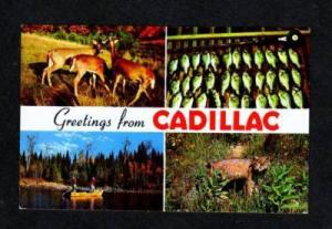 MI Greetings From CADILLAC MICHIGAN POSTCARD POST CARD