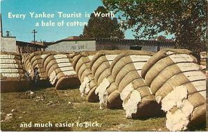Every Yankee Tourist is Worth a Bale of Cotton and Much Easier to Pick