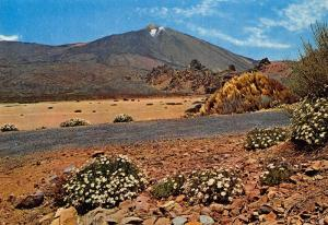 Spain Tenerife The Teide and Landscape Postcard