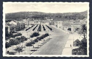 Avenida Todi Setubal Portugal RPPC unused c1930's