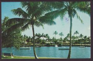 Florida Scene Postcard BIN