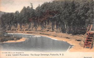George Devasego, Catskill Mtns., Prattsville, N.Y., Early Postcard, Used in 1910