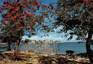 Guadeloupe L'Autre Bord a Moule