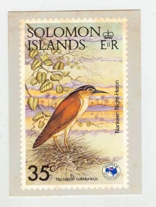 Solomon Islands Stamp postcard, Nankeen Night Heron, 1983