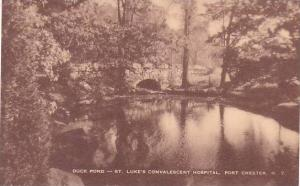 New York Port Chester Duck Pond Saint Lukes Convalescent Hospital Artvue