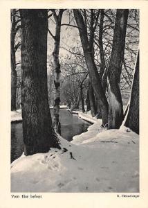 Vom Eise befreit, Trees River Winter R. Henneberger