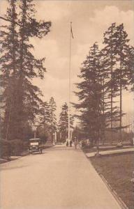 Washington Seattle Flagpole and Library Walk University Of Washington Albertype