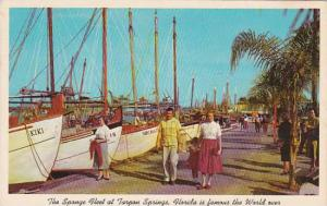 Florida Tarpon Springs Sponge Fleet At Dock One Of The Many Attractions Of Ta...