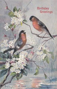 AS: MARY GOLAY, 1900-10s; Birthday Greetings, Birds and white flowers