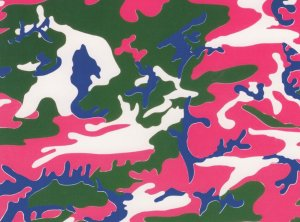 Andy Warhol Art Print Camouflage Pink Green Blue Painting Postcard
