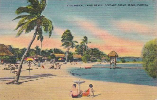 Florida Miami Coconut Grove Tropical