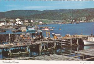 Roberts Arm , Notre Dame Bay , NEWFOUNDLAND , Canada , 50-70s