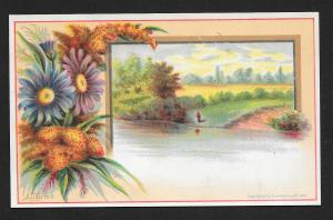 VICTORIAN TRADE CARDS (2) Stock Cards Flowers Autumn & Winter Views c1882