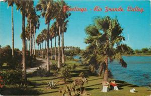 Rio Grande Valley South Texas TX palm trees along lake Postcard