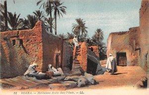 Habitations Arbes dans l'Oasis Biskra Egypt, Egypte, Africa Unused