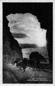 Algeria Constantine Route de Philippeville Clair de Lune Road Postcard