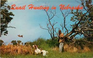 Quail Hunting in Nebraska NE Brittany Spaniel Dog Postcard