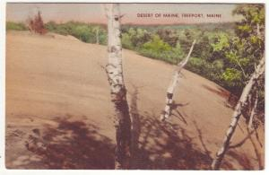 P349 JL,s 1930-45 linen unused freeport maine desert