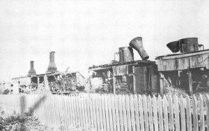 Logging in Washington State Donkey Graveyard, Satsop, WA c1950s Vintage Postcard