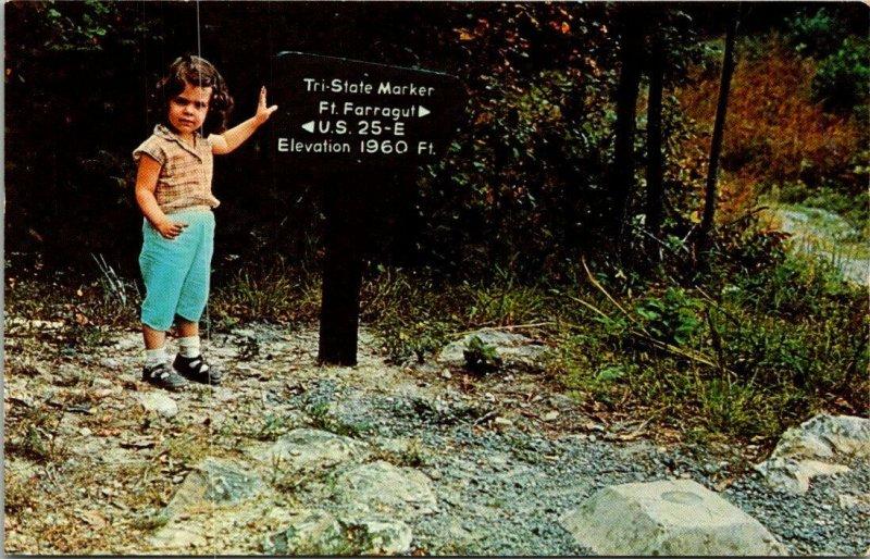 CUMBERLAND GAP PARK ~Three Tri State Marker Kentucky Tennessee Virginia Postcard