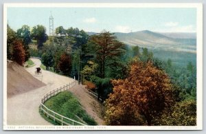 Chattanooga~Buggy~Nat'l Blvd on Missionary Ridge~Detroit Publishing #6302 c1907