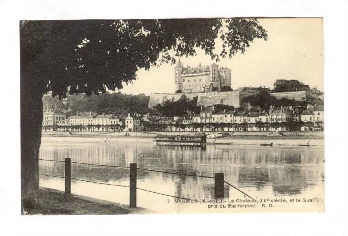 Le Chateau, XV Siecle, Et Le Quai Pris Marronnier, Saumur (Maine et Loire), F...