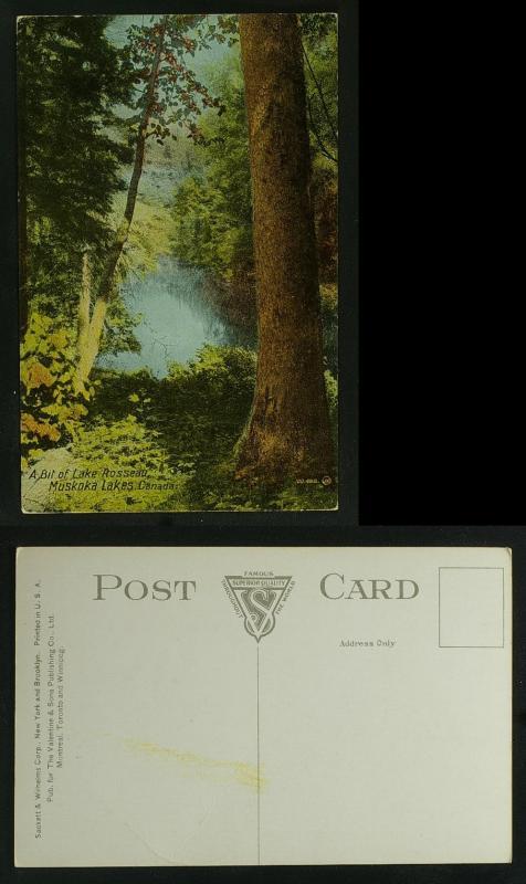 A bit of Lake Rosseau Muskoka, view through trees c 1910