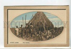 438904 AFRICA Sierra Leone Nude Girls rice cleaning Vintage embossed postcard