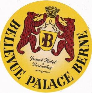 Switzerland Bern Grand Hotel & Bernerhof Vintage Luggage Label sk1144