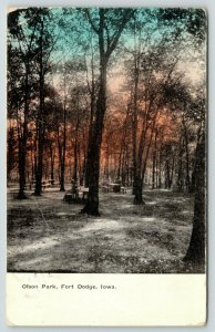 Fort Dodge Iowa~Olson Park~Picnic Benches Among Trees~Colored Sky~1910