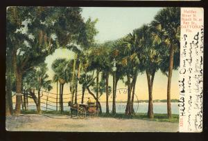 Daytona, Florida/FL Postcard, Horse & Wagon At Beach & Bay Streets, 1907!