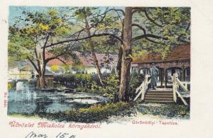 Udvozlet Miskolcz kornyekerol , Gorombolyi-Tapolcza, Hungary , 1890s