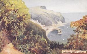 AS, The Hobby Drive, Delightful Devonshire, CLOVELLY (Devon), England, UK, 19...