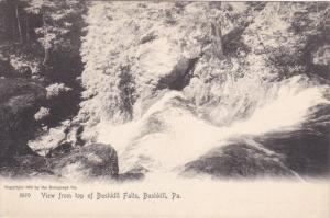 View from top of Bushkill Falls , BUSHKILL , Pennsylvania , 00-10s