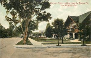 Los Angeles CA~Chester Place Towards Adams Street~Neighborhood Homes~1907 PC