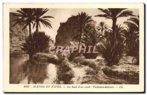 Old Postcard Scenes And Types Au Bord d & # 39Un wadi date palms Palms