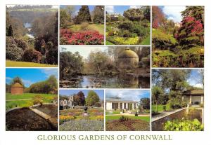 Glorious Gardens of Cornwall Multi View Postcard, Plants Flowers Shrubs 29E
