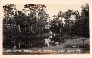Lake Wales Florida Mountain Lake Sanctuary Real Photo Vintage Postcard AA575