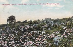 New Hampshire Manchester Uncanoonuc Laurel Fields At Base Of Uncanoonuc Mount...