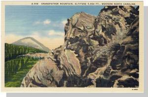 Nice Western, NC Postcard, Grandfather Mountain, Near Mint!